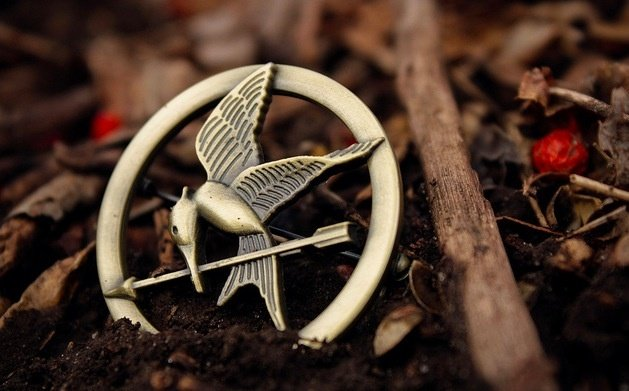 survival in the hunger games