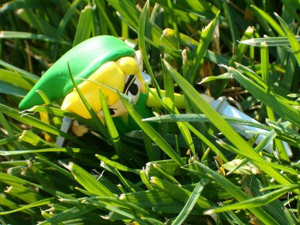 Zelda: Link lost in grass