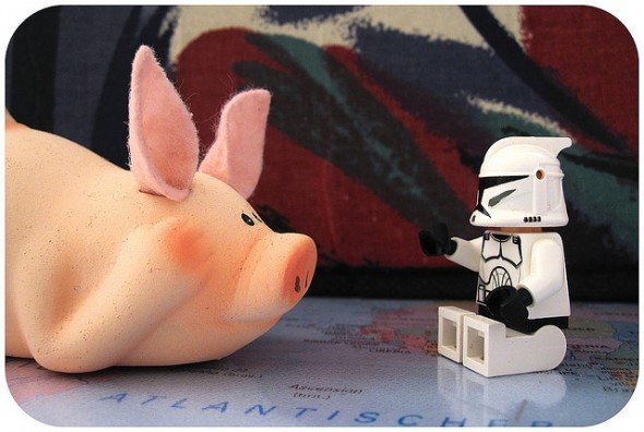 Bacon Pig and StormTrooper