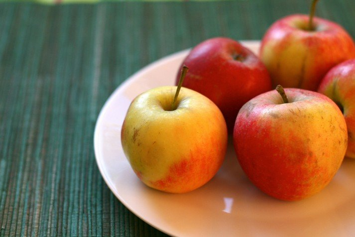 Intermittent Fasting Apple Plate
