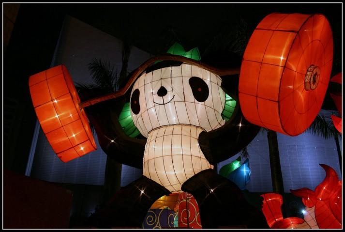 powerlifting panda