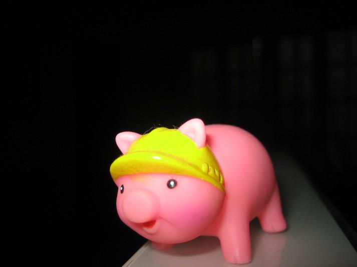 pig hard hat