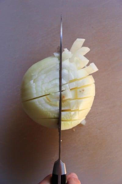 Noel: Onion cut 1