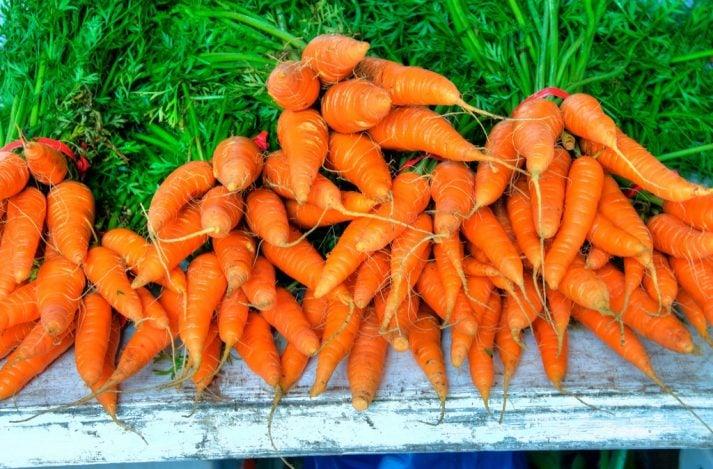 10 Ways to Make Vegetables Taste Good: Start Eating Veggies! | Nerd Fitness