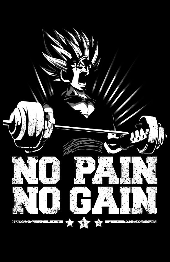 "A picture of Goku with ""no pain, no gain."""