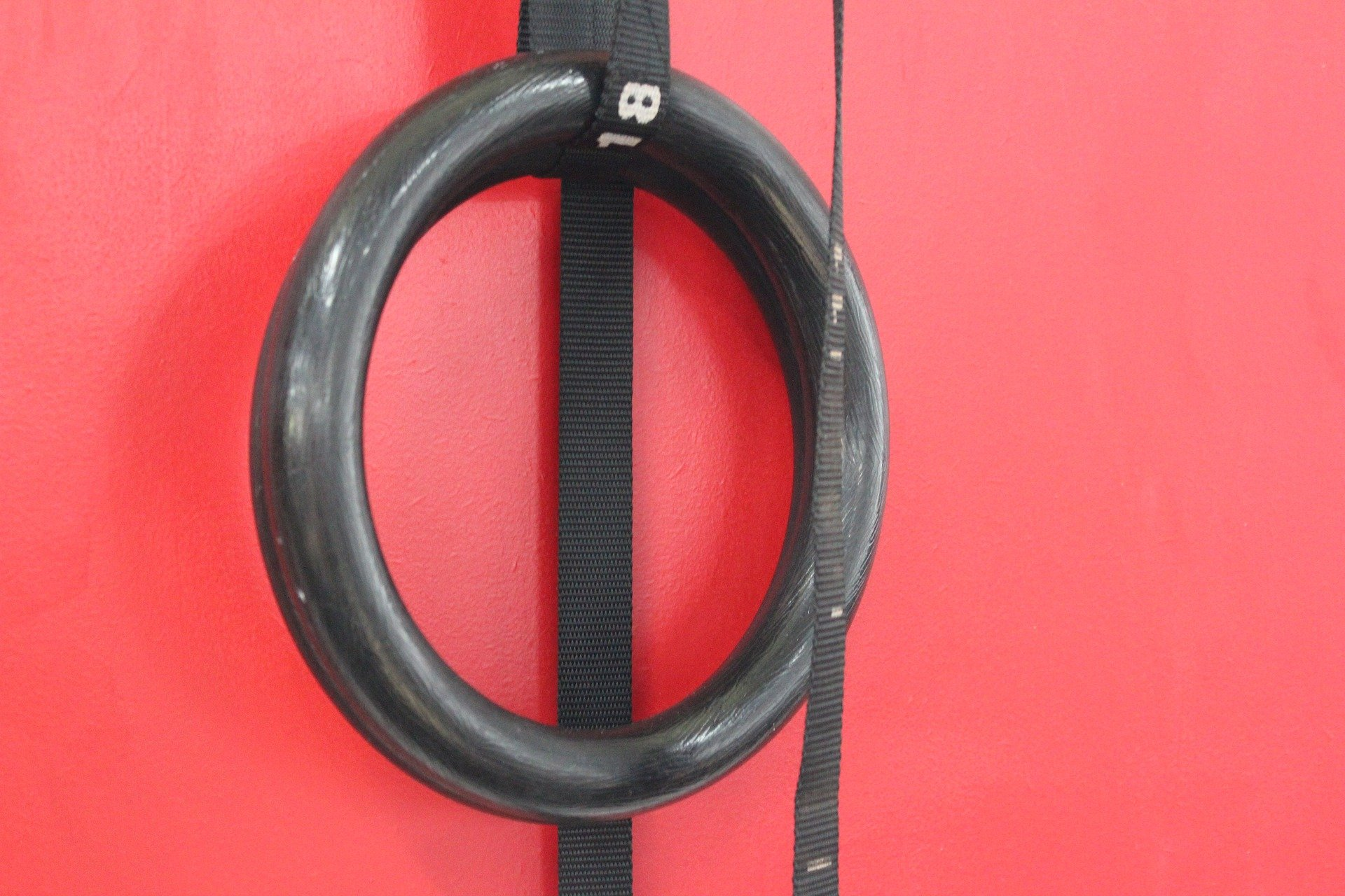 Gymnastic rings come in all shapes and sizes, but let's point you in the right direction on what to buy.