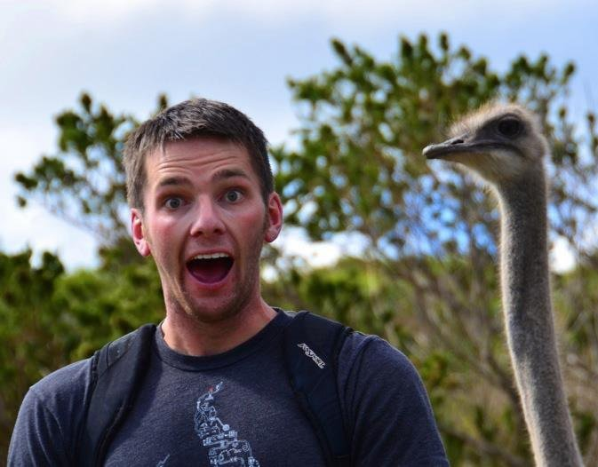 Steve hanging out with an ostrich.