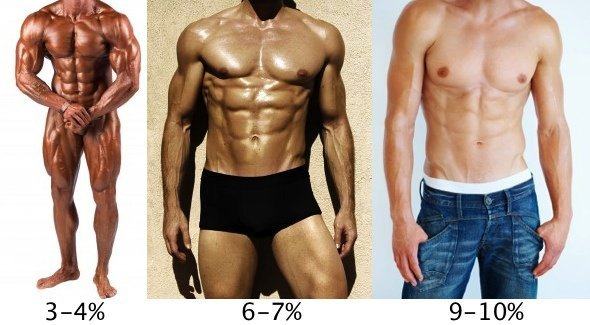 This picture shows different body fat %.