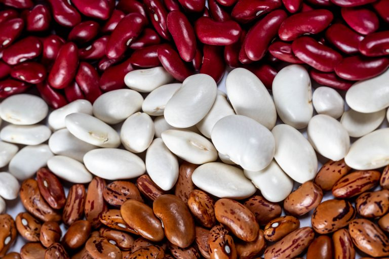 Beans are a great source of protein for a plant-based diet.