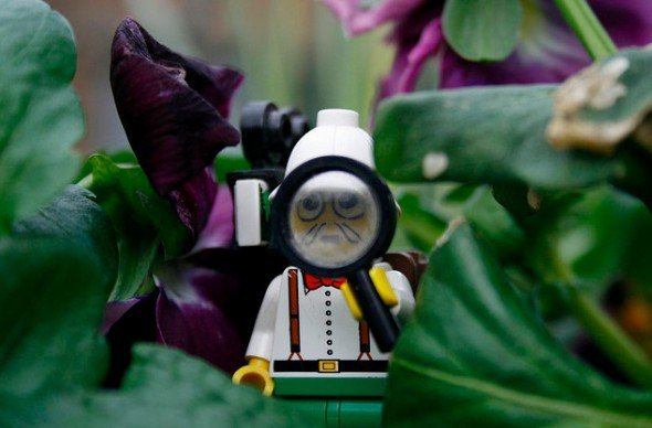This LEGO explorer is on the hunt for Paleo Meals and Recipes