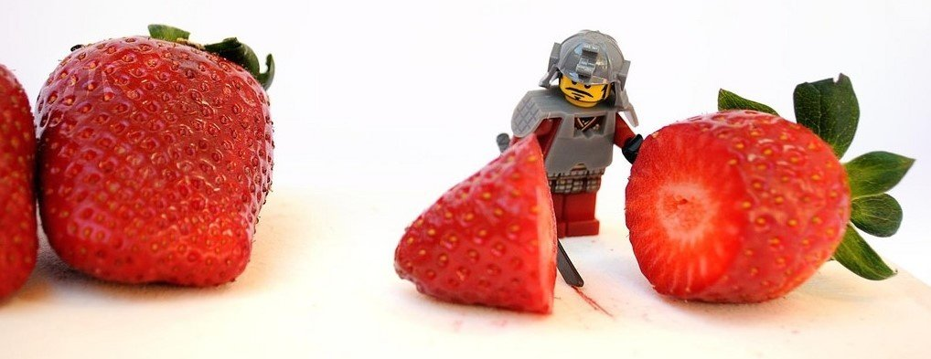 Should this LEGO eat berries? Daily? Let's find out!