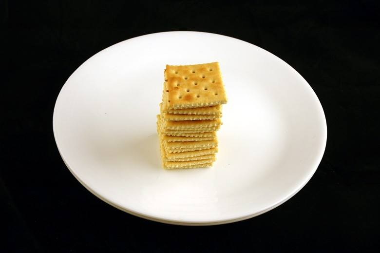 This plate shows 200 calories of Saltine Crackers
