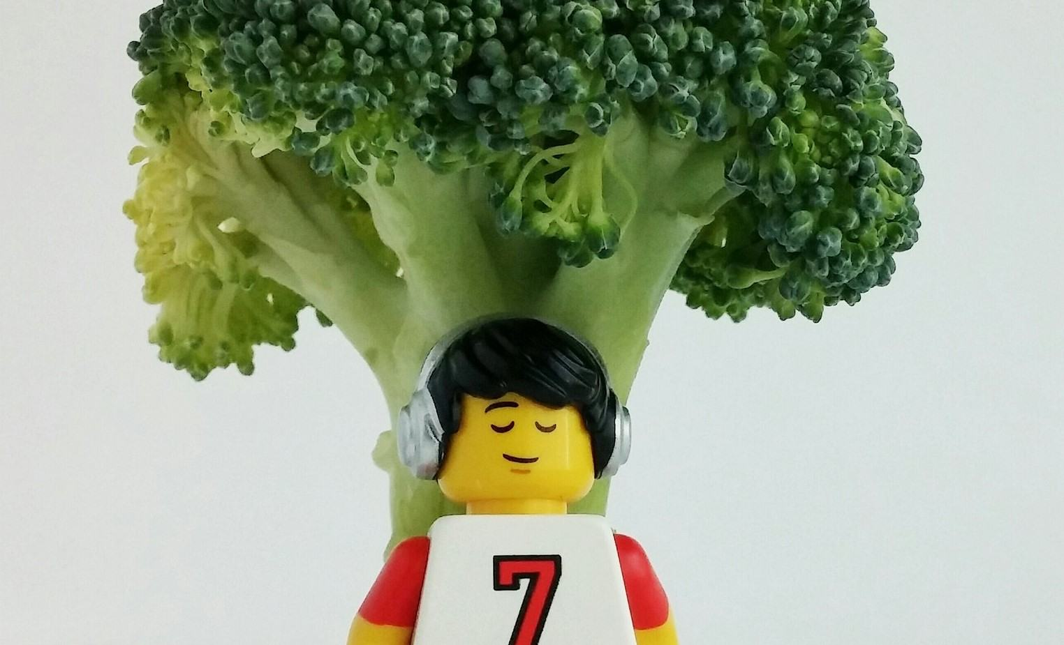 A LEGO one with his flexitarian diet.