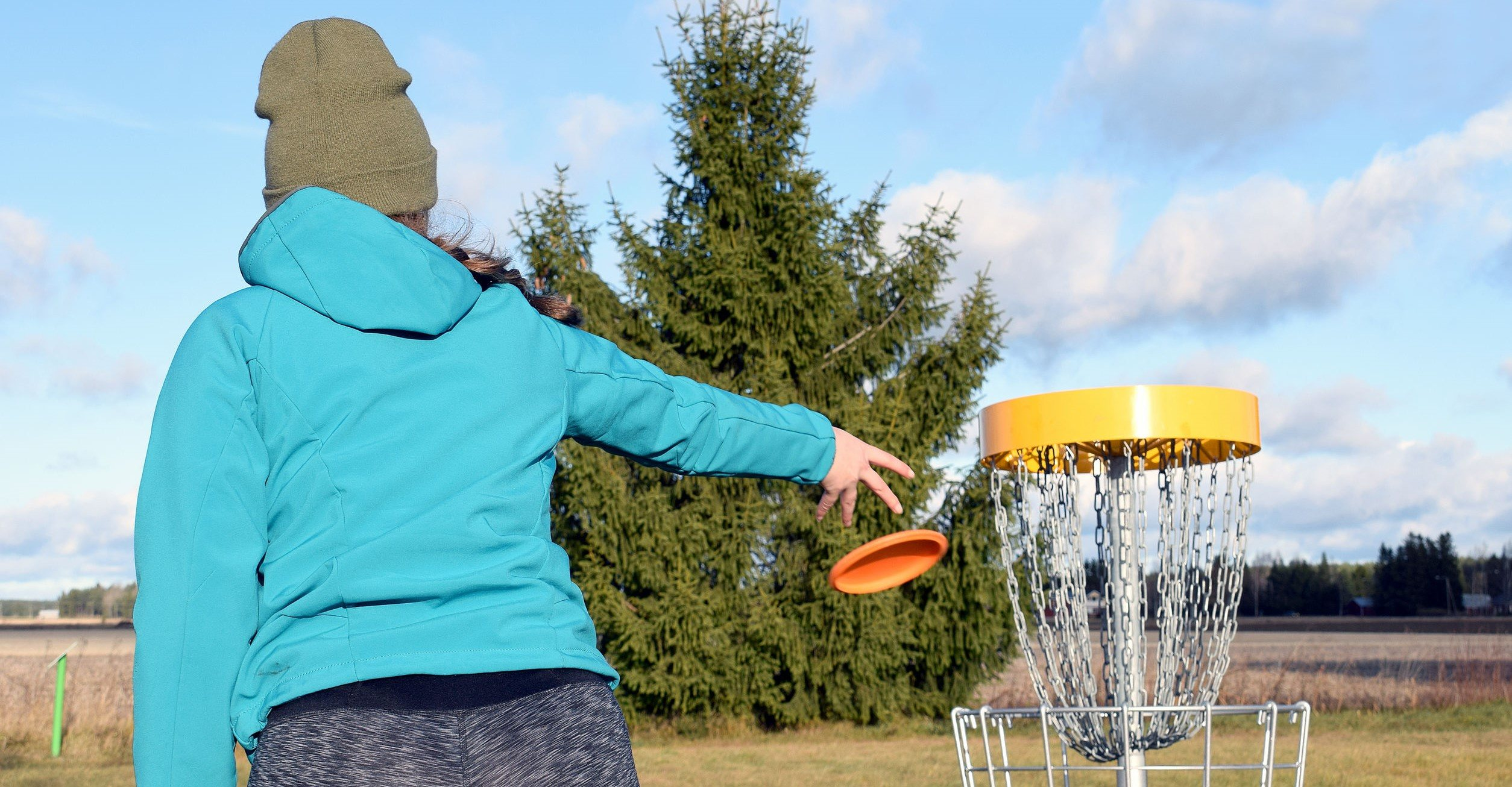 A disc golf course