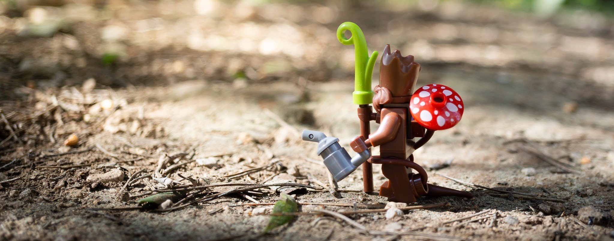 This photo shows a LEGO going on a walk