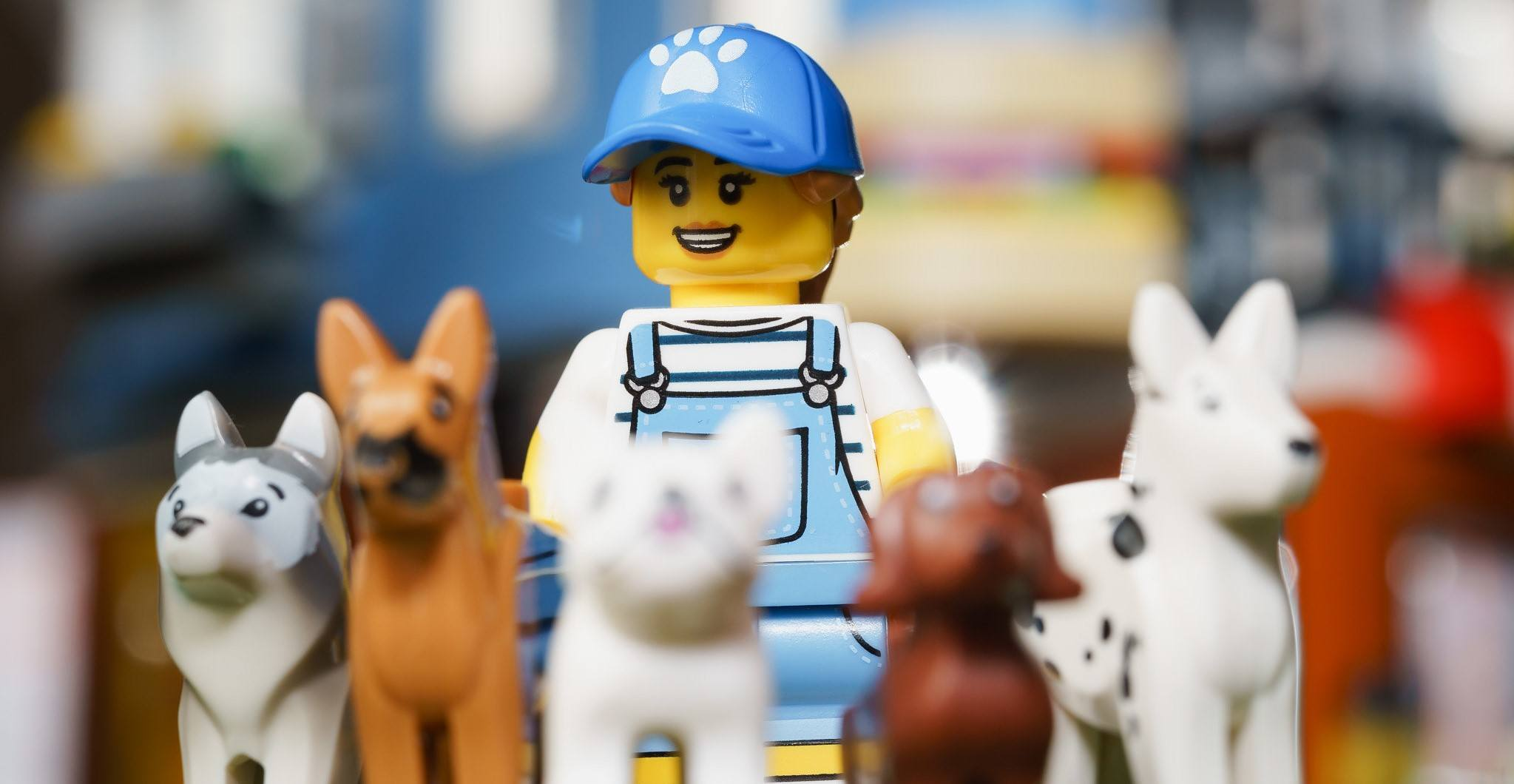 A picture of a LEGO dog sitter.
