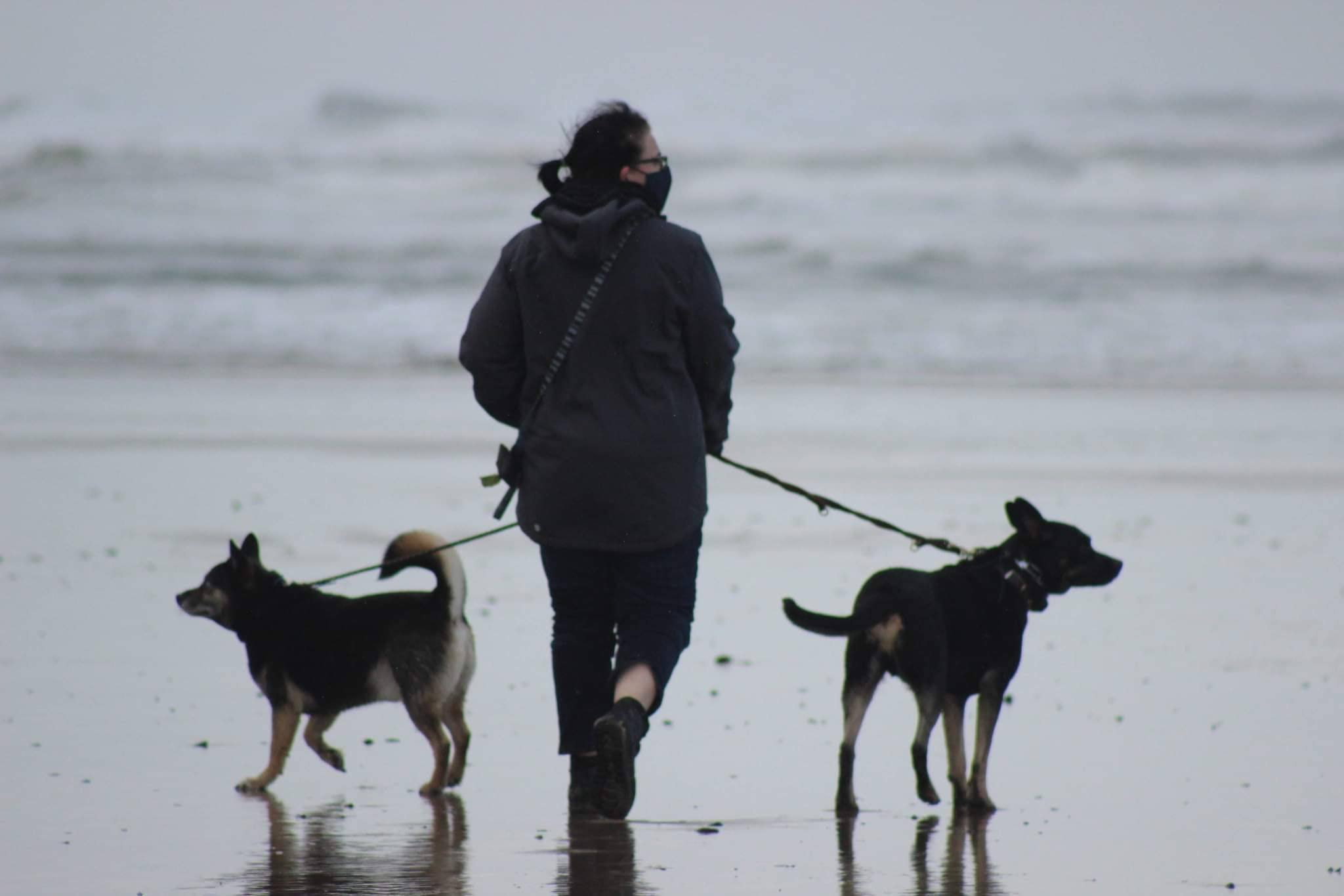 Ranada walking on the beach with her two dogs